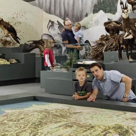 Naturmuseum St.Gallen 10