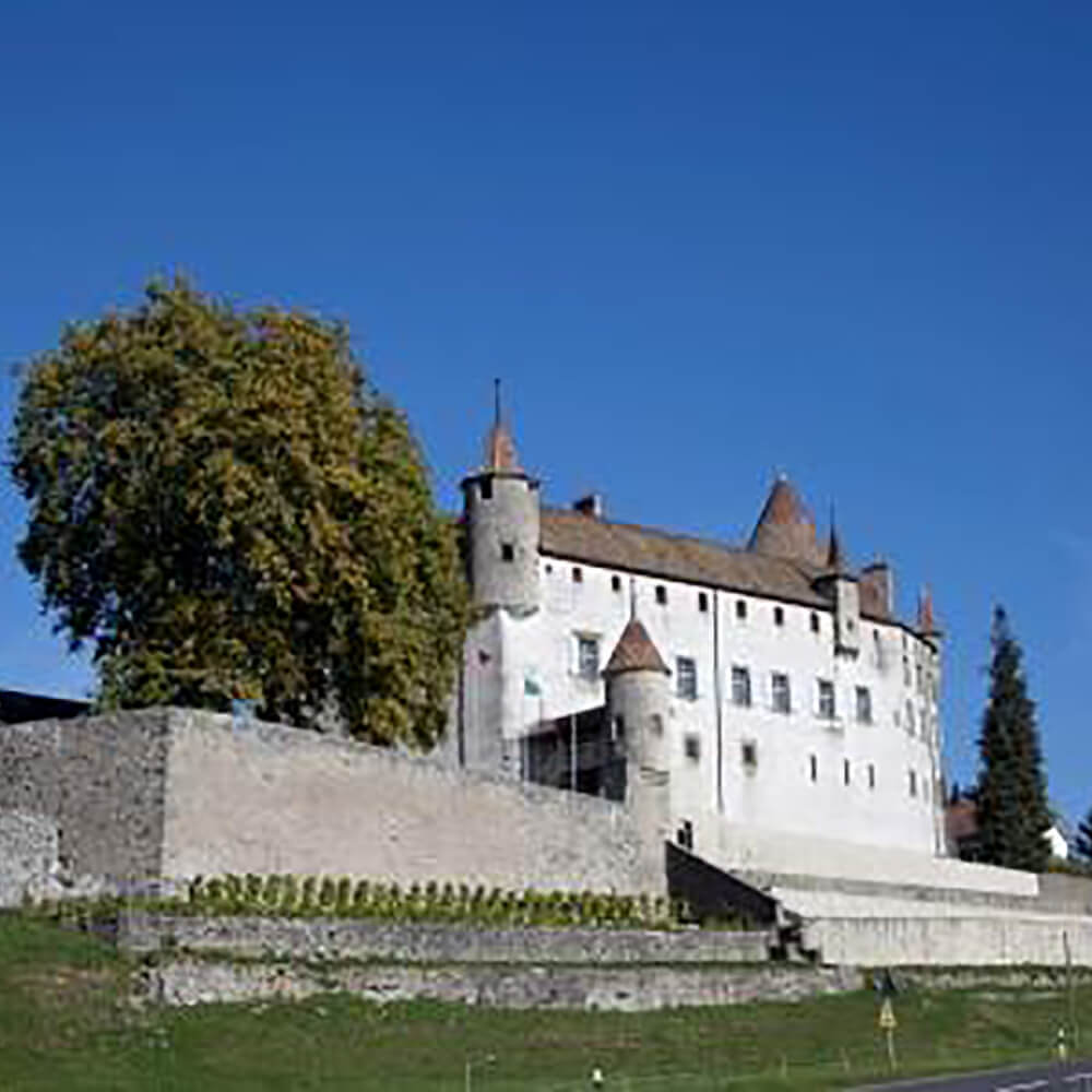Château d'Oron in Oron-le-Châtel