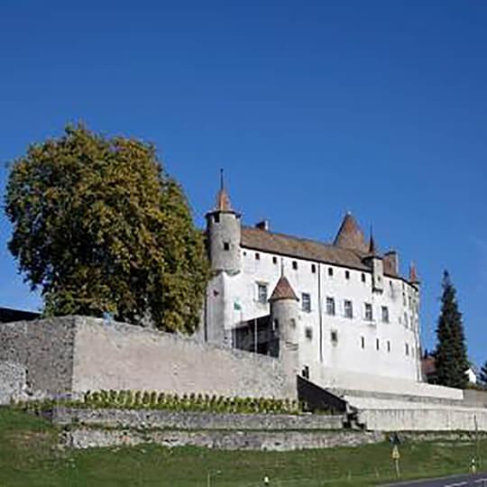 Vorschaubild zu Château d'Oron in Oron-le-Châtel