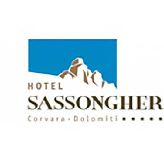 Logo zu Hotel Sassongher *****