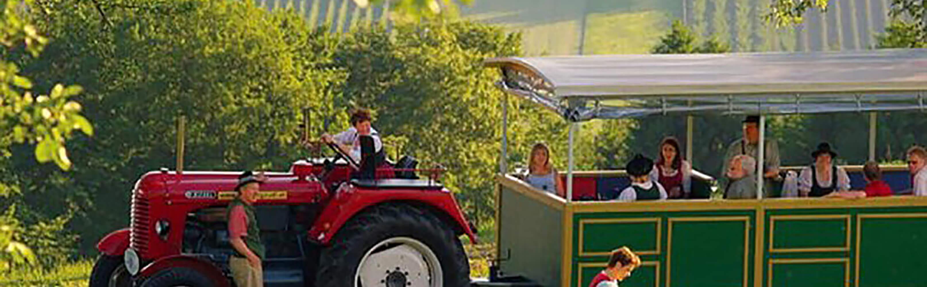 Traktorgaudi Steiermark 1