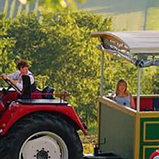 Vorschaubild zu Traktorgaudi Steiermark