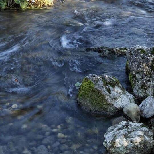 Wasserspaziergang in Olten 10
