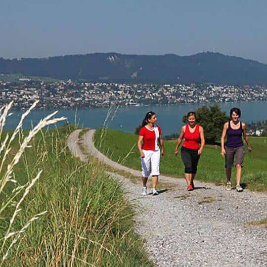 Vorschaubild zu Zürichsee Tourismus