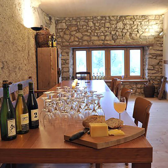 Vorschaubild zu Rebberg und Weinkeller