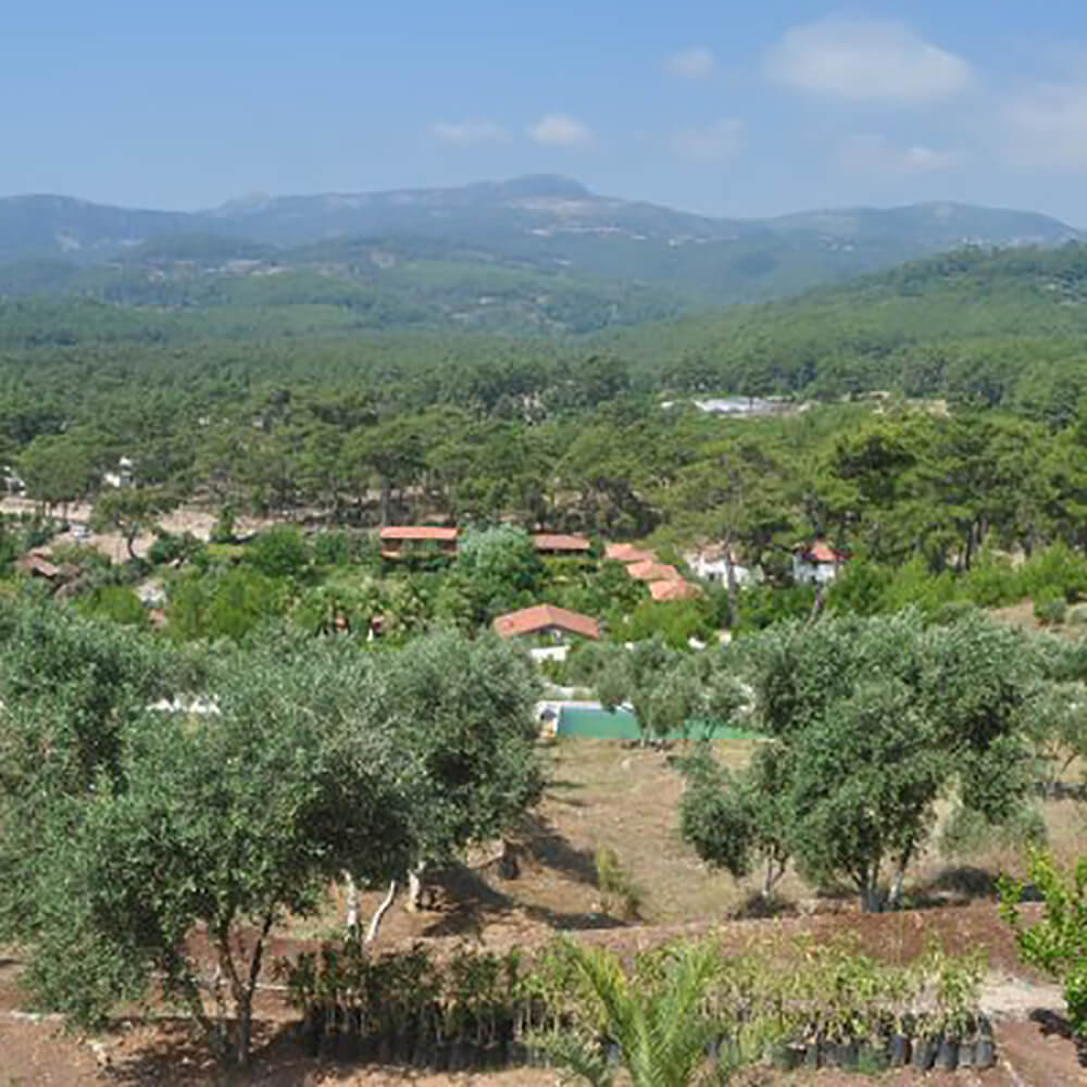 Eine Reise zu sich selbst - Castillo San Rafael in Andalusien