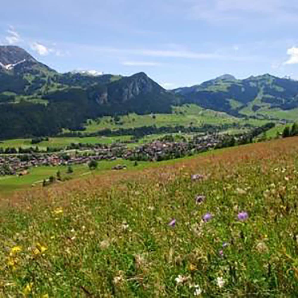 Naturpark Gruyère Pays-d'Enhaut