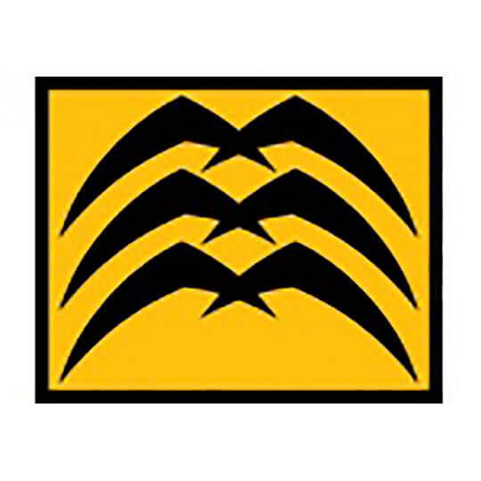 Logo zu Lasercity Biel/Bienne