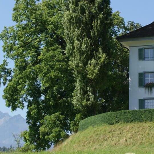 Richard Wagner Museum Luzern 10
