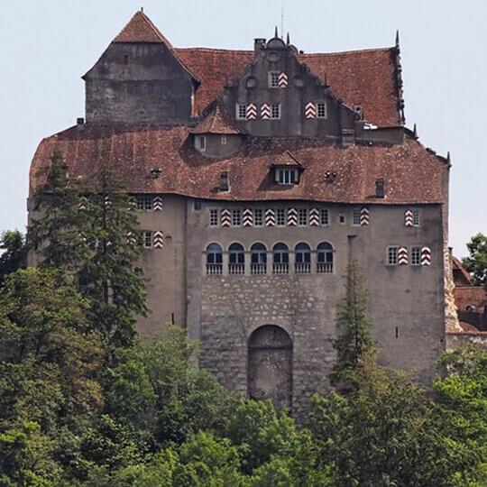 Schloss Habsburg im Aargau  10