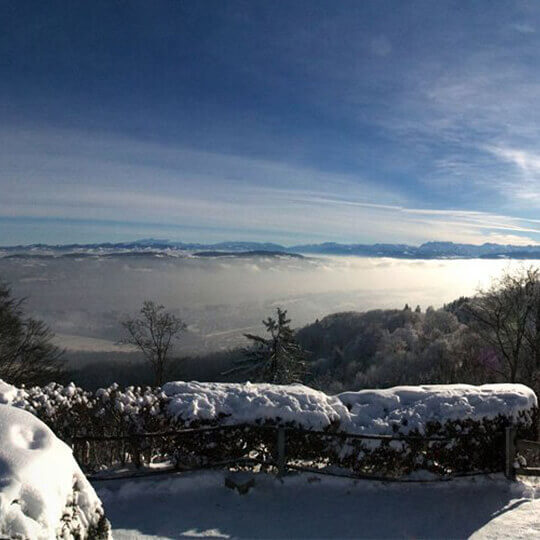 Uetliberg - Top of Zurich 10