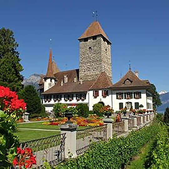 Vorschaubild zu Schloss Spiez