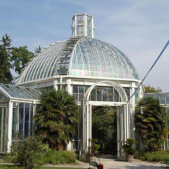 Vorschaubild zu Konservatorium und Botanischer Garten Chambésy/Genf