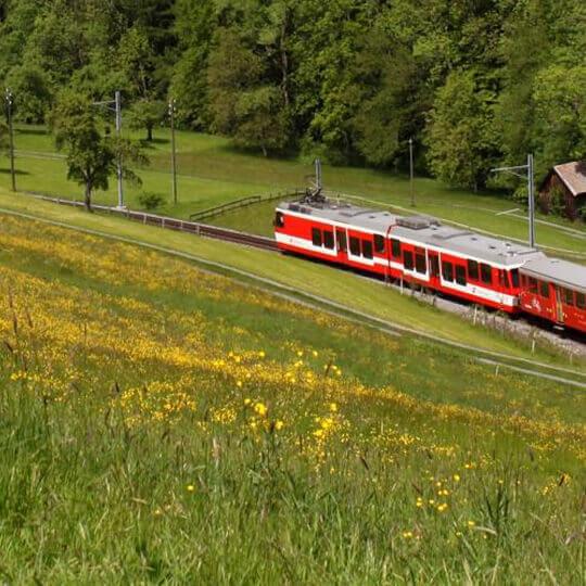 Bergbahn Rorschach–Heiden 10