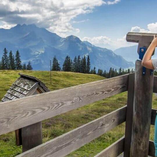 Bergbahnen Meiringen-Hasliberg AG 10